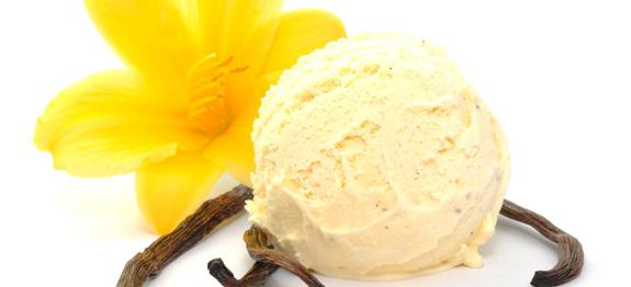 Ricetta bimby gelato vaniglia