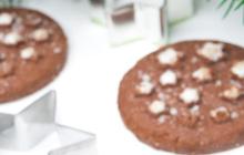 Biscotti al cioccolato Bimby Natale